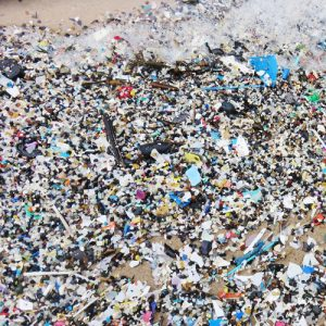 BLOG - Plastics: Issues, Impacts and Alternatives